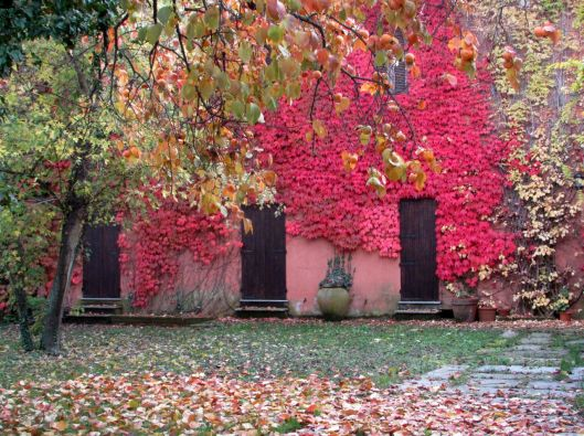 Casa d'autunno © Jordan Lessona