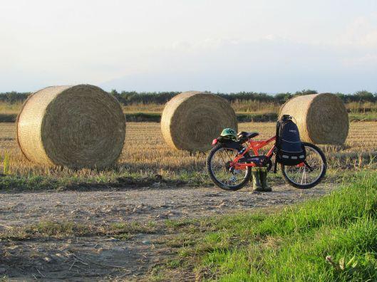 Nella campagna vercellese in bici © Jordan Lessona