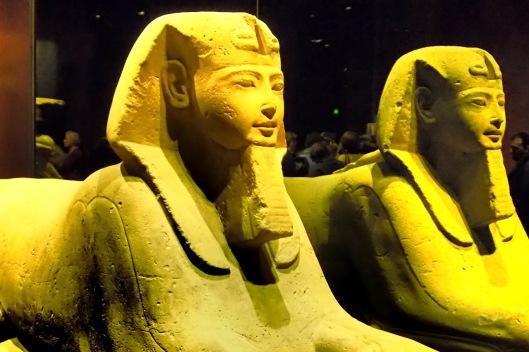 Sfingi al Museo Egizio di Torino © Jordan Lessona